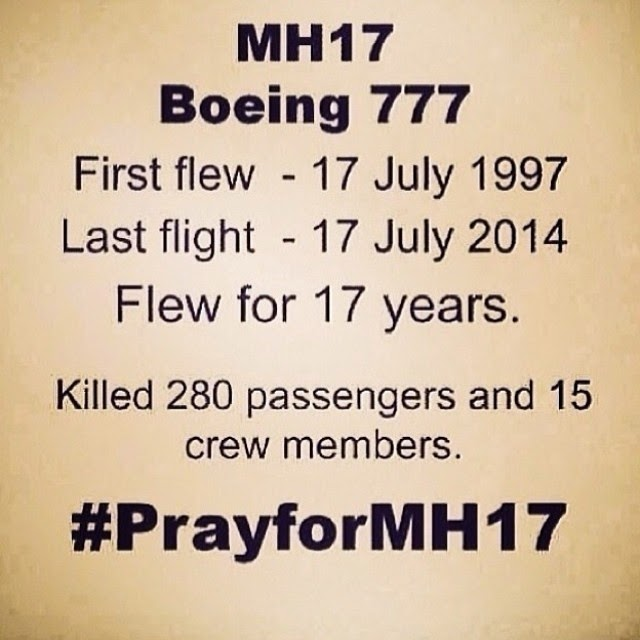 MH17 Crashed Down