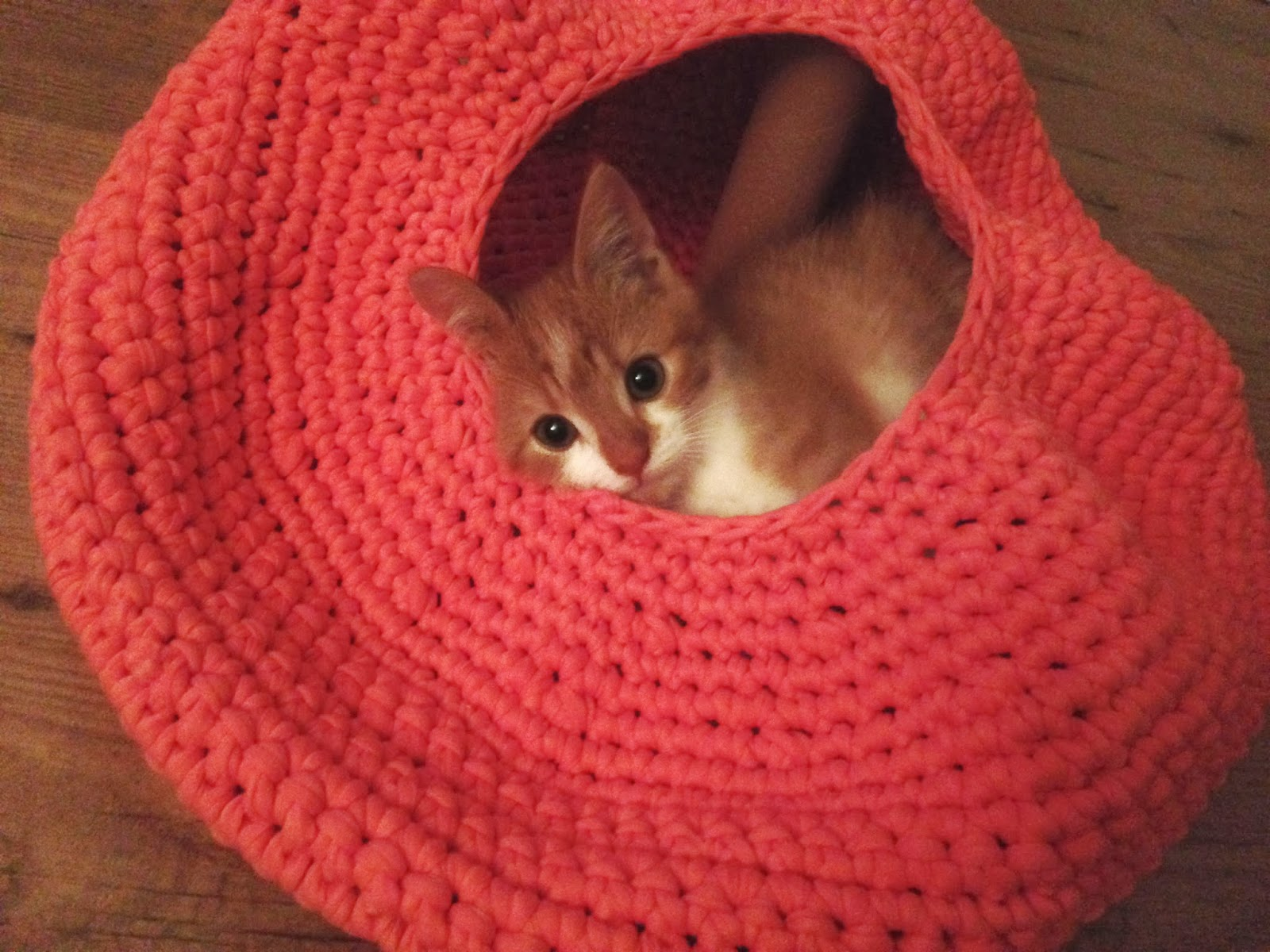 Free Crochet Patterns Cat : Lily Razz: Crocheted Cat Nest