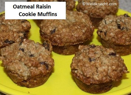make traditional cookies or muffins i created an oatmeal raisin cookie ...