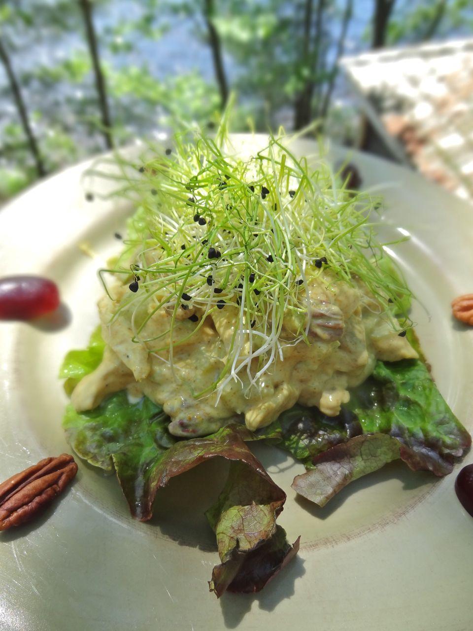 Modern Coronation Chicken Salad