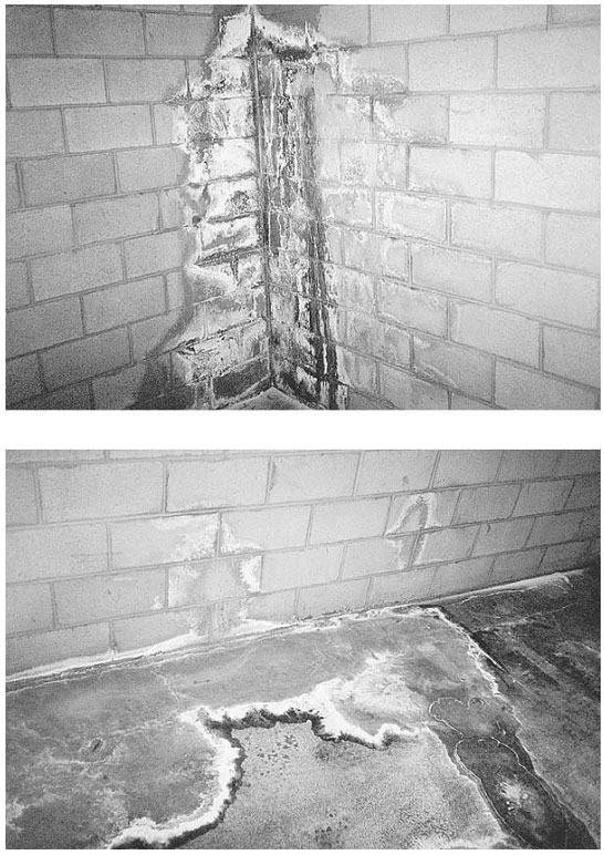 Moisture Basement Walls Types Of Damage Engineering