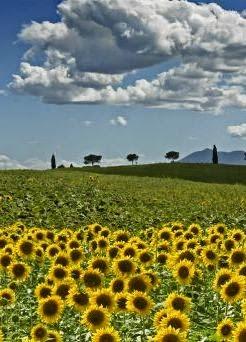 Corsi di italiano in Toscana