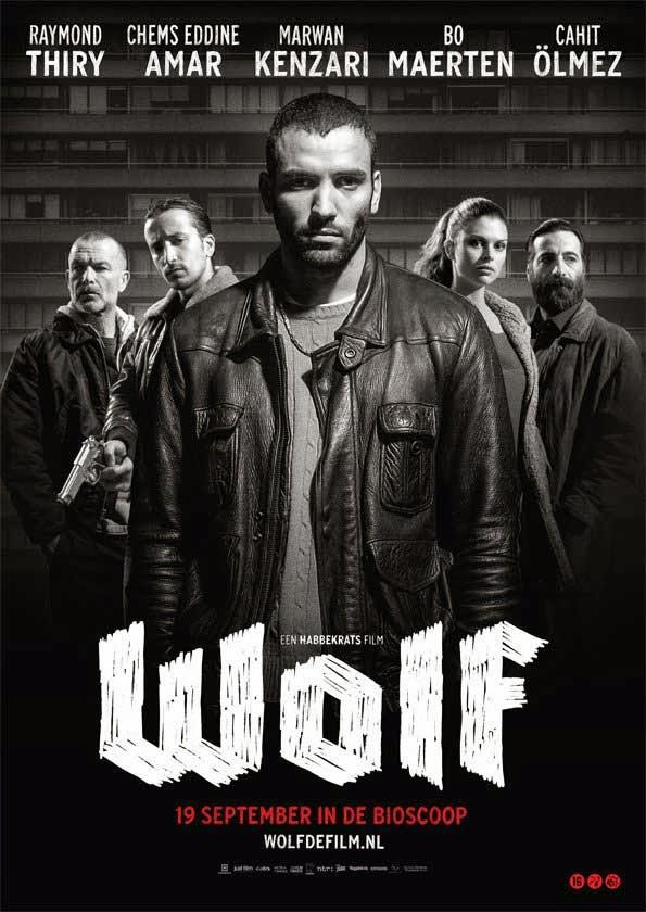 Tay Đấm Quyền Anh - Wolf 2013