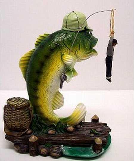 Funny fish wallpaper funny animal for Funny fishing pics