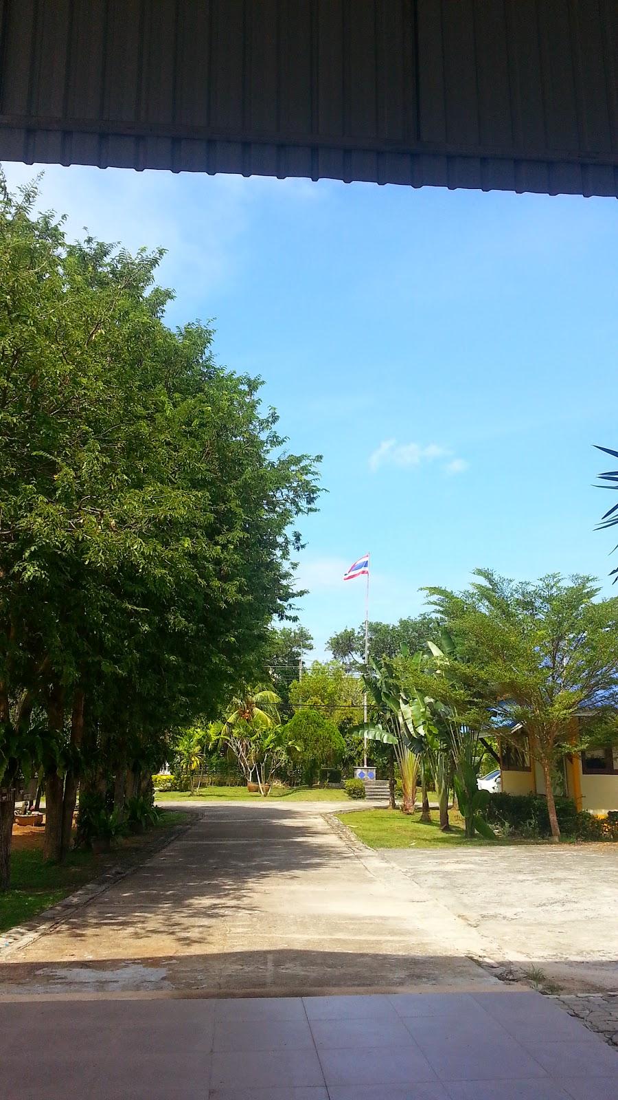 Phuket High Season
