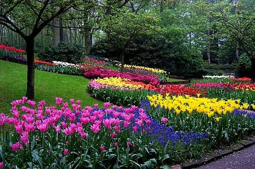 Libretas de colores im genes para trabajar en primavera for Jardines de primavera