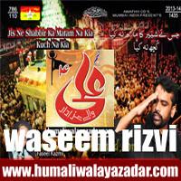 http://ishqehaider.blogspot.com/2013/10/waseem-rizvi-nohay-2014.html