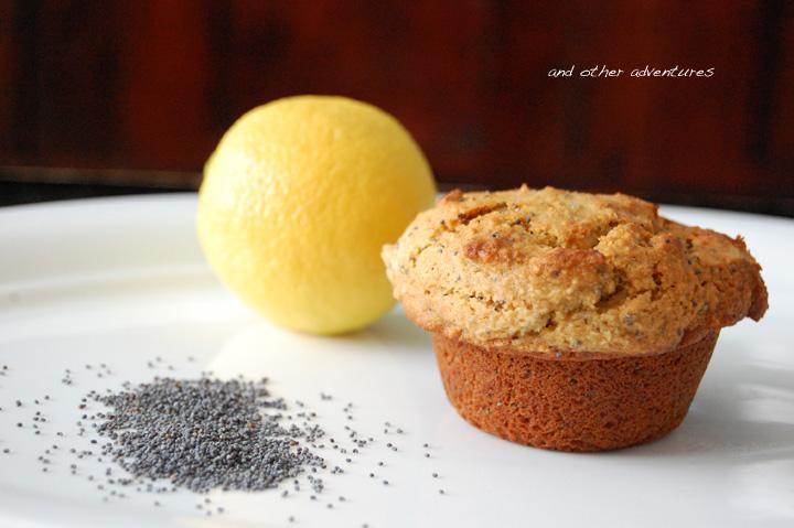 lemon poppy seed almond flour muffins