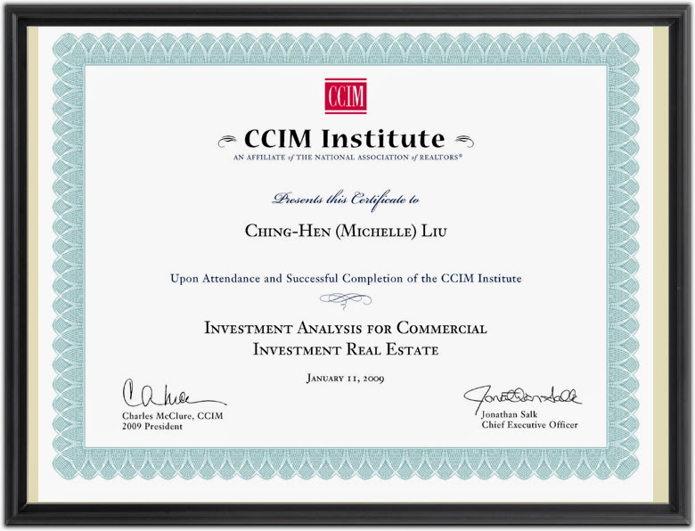 CCIM User Decision Analysis