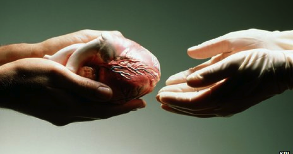 organ transplantation in japan and uk The draft of the organ transplantation law was proposed the issue was discussed in the diet of japan, and bill for revised organ transplant act was passed and.