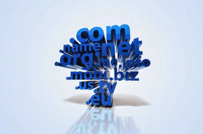 Picking the Best Domain Name