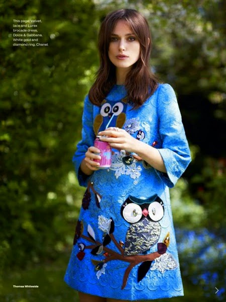 Dolce & Gabbana AW 2014 Jeweled Owl Dress