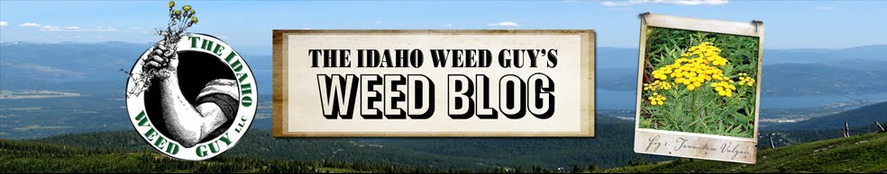 The Idaho Weed Guy