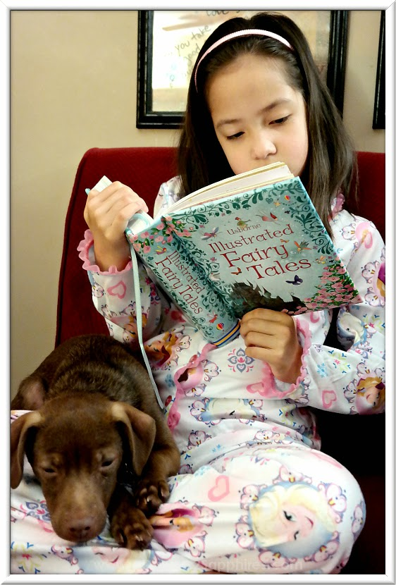 Brilliance Award Winning Toy     Usborne Book of Illustrated Fairy Tales     www.3garnets2sapphires.com