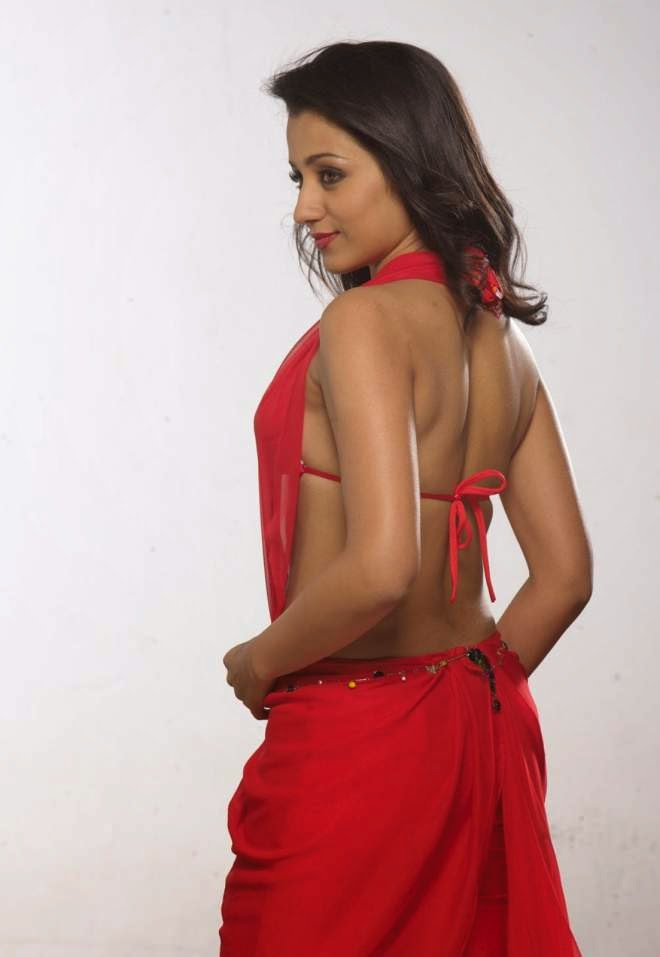 trisha marriage hot backless photos