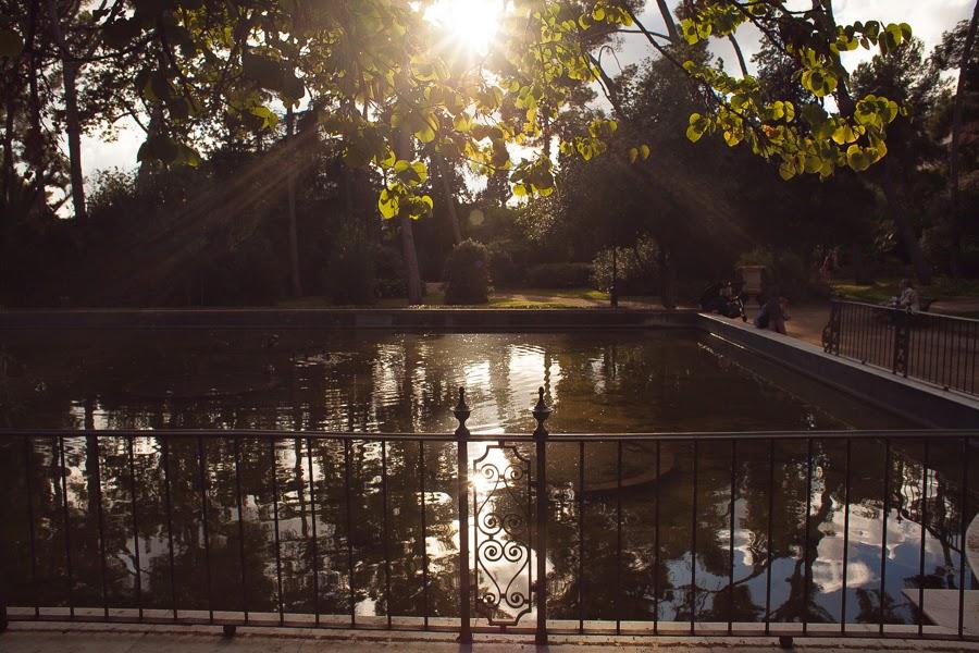 Пруд в парке Педральбес