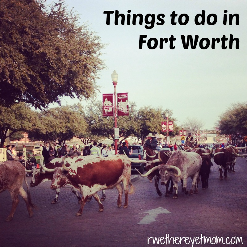 25 best things to do in austin texas things to do in for Best things to do in austin texas