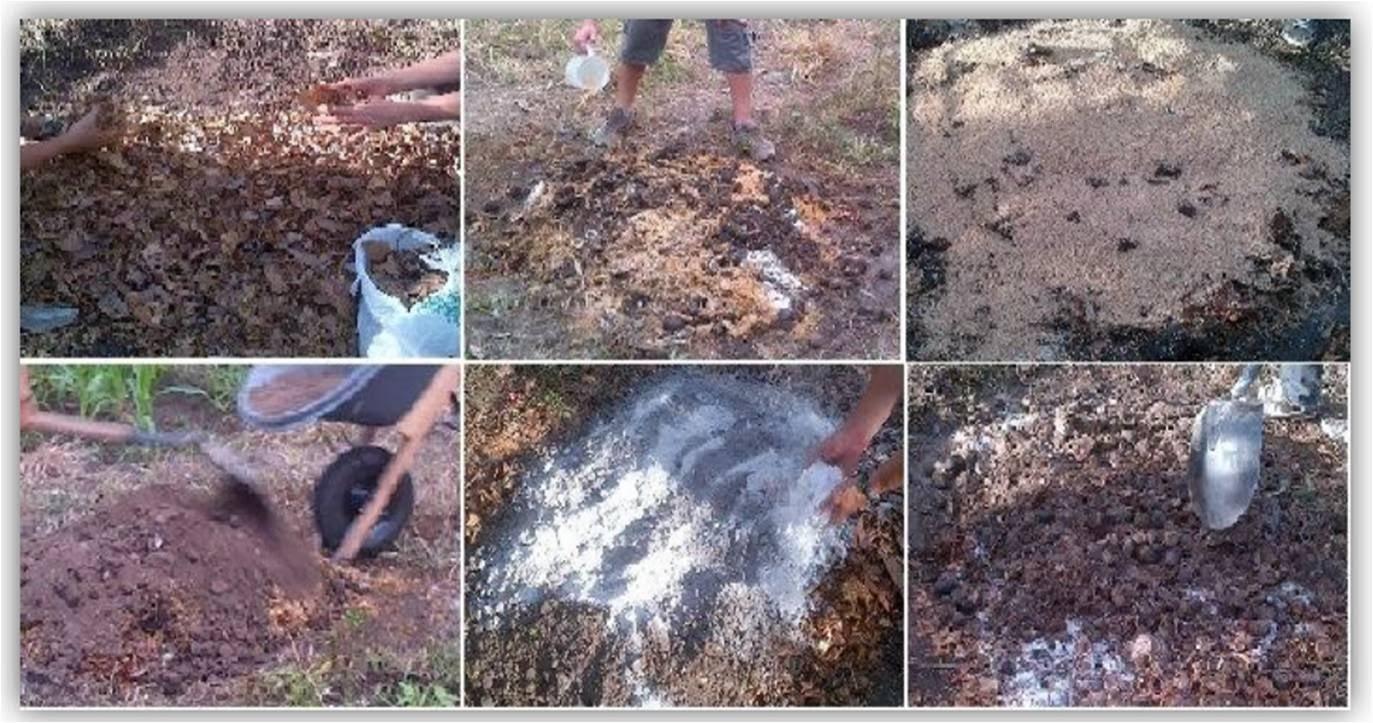 El blog de jair beltr n informe compost abono tipo - Hacer abono organico ...
