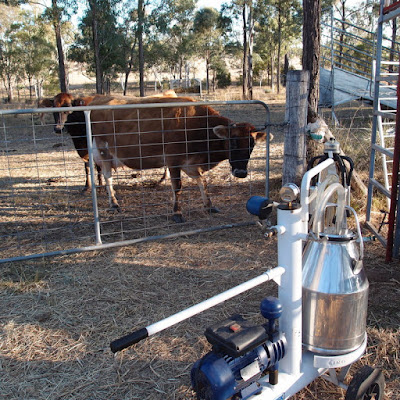 eight acres: how to clean a portable milking machine