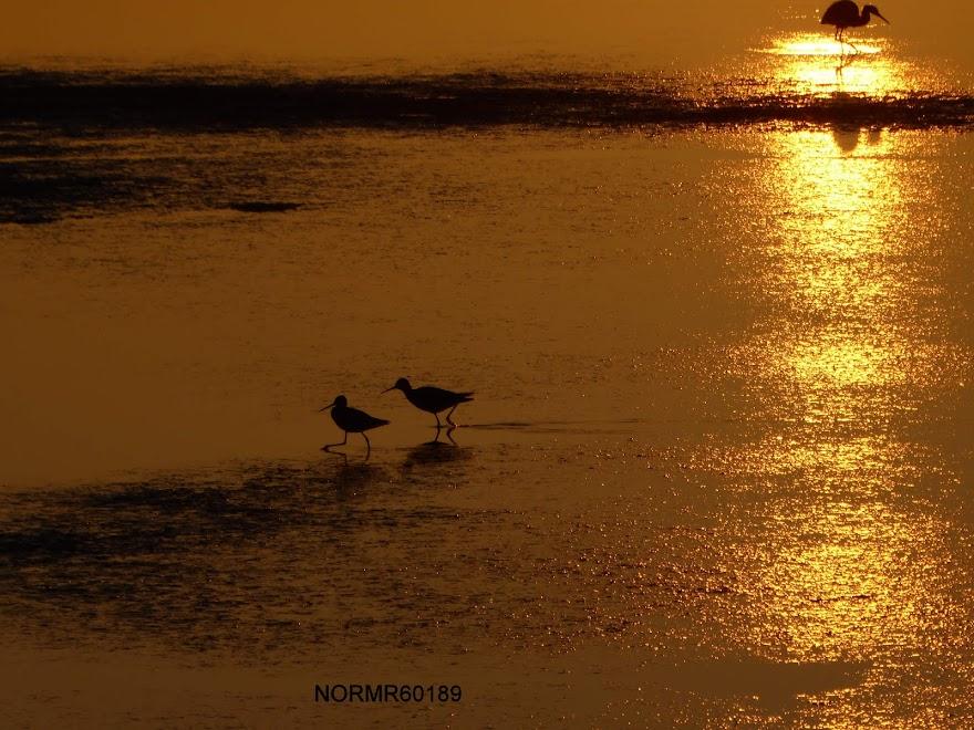 Sunrise April 25