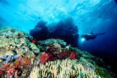 Keindahan Pulau Misool di Raja Ampat