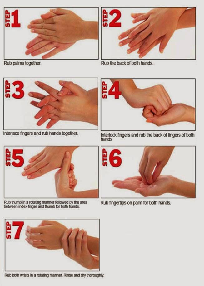 Langkah-Langkah Mencuci Tangan