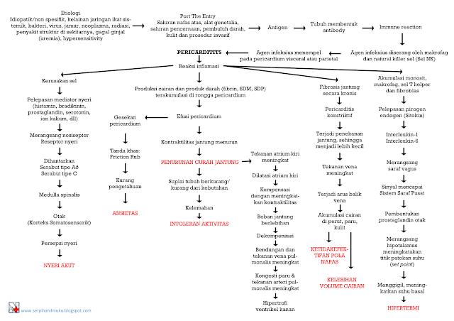 Perjalanan Penyakit Pericarditis Hingga Diagnosis Keperawatan