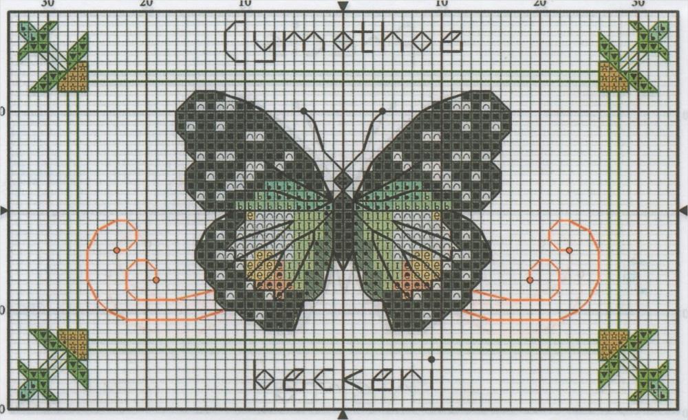 Professione donna schema punto croce farfalle colorate for Farfalle a punto croce