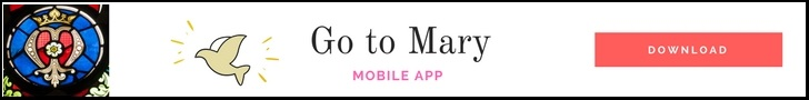 Go to Mary app