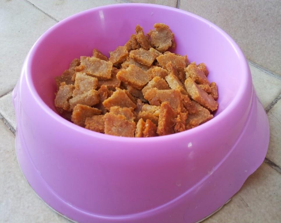 biscotti gatto