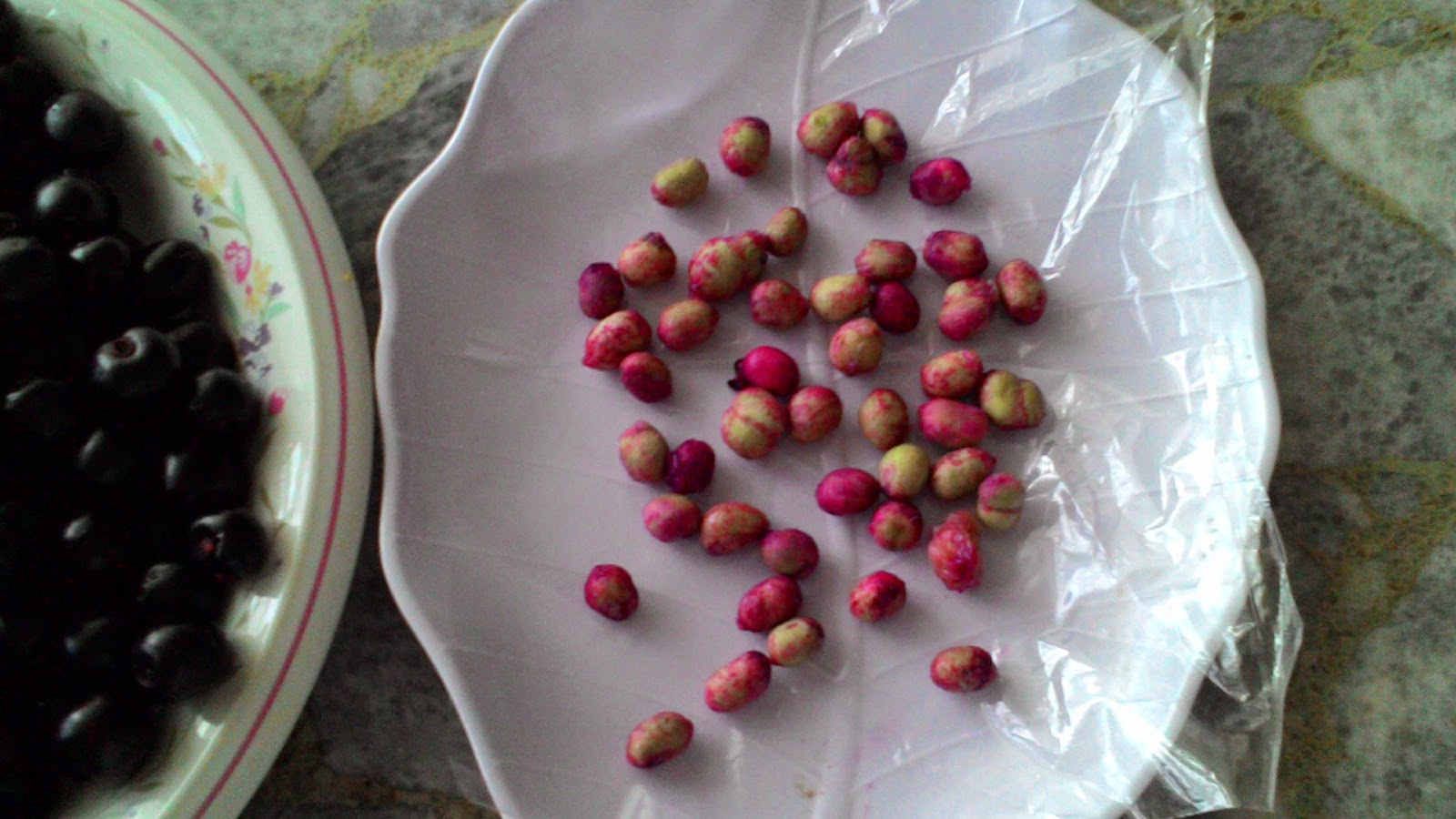 Syzygium Cumini Seeds- Free Sample