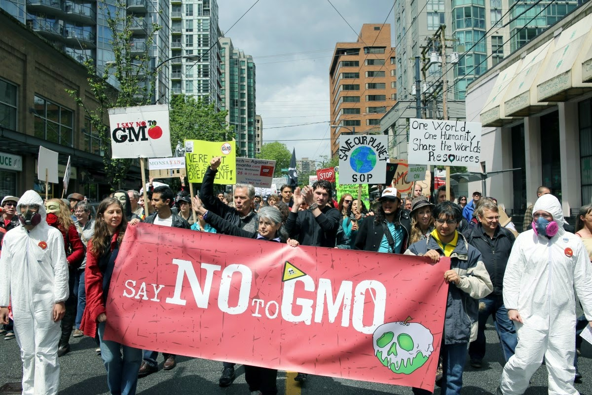 monsanto creating a life sciences company Monsanto grew from a small chemical startup company to an enormously powerful agricultural and life sciences company, which fortune magazine once labeled possibly.
