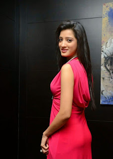 Richa Panai in a Floor Length Red Gown at Player Movie Teaser Launch