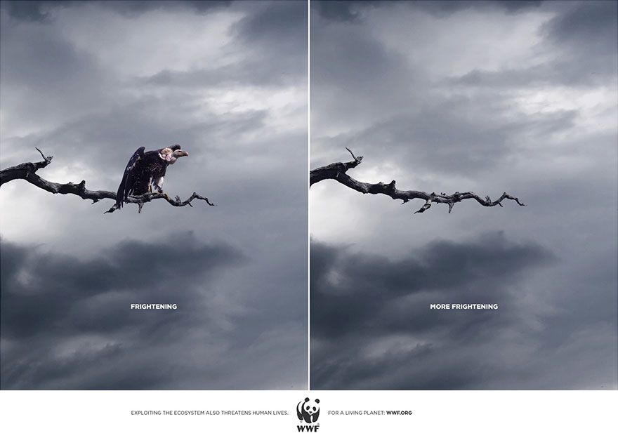 Horrifying vs. More Horrifying - WWF