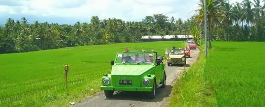 Indonesia Safari Tours Tabanan vw Safari Tour
