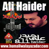 http://ishqehaider.blogspot.com/2013/07/ali-haider-nohay-2014.html