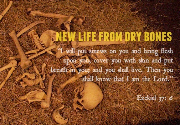new life from dry bones