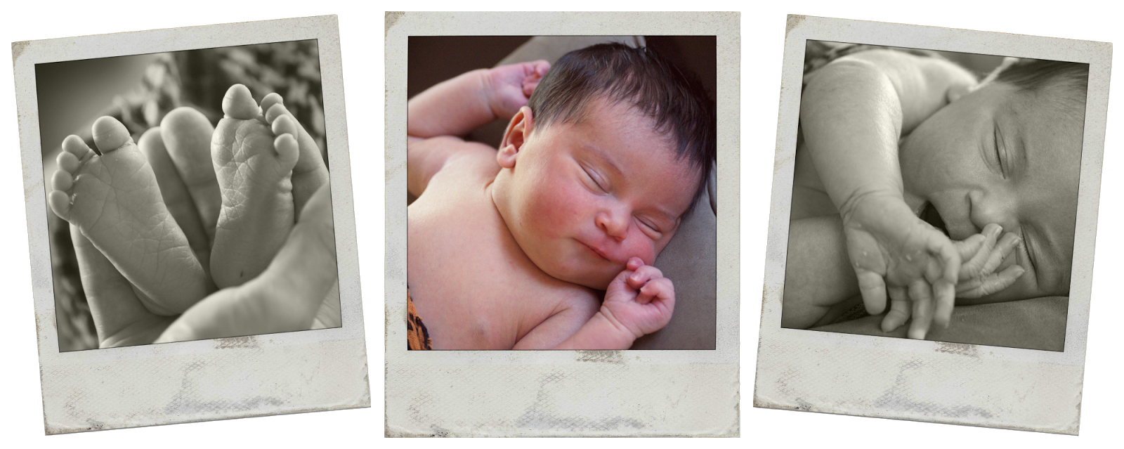 Newborn Photoshoot, Sydney Australia