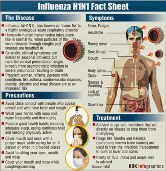 viral infection influenza or flu essay