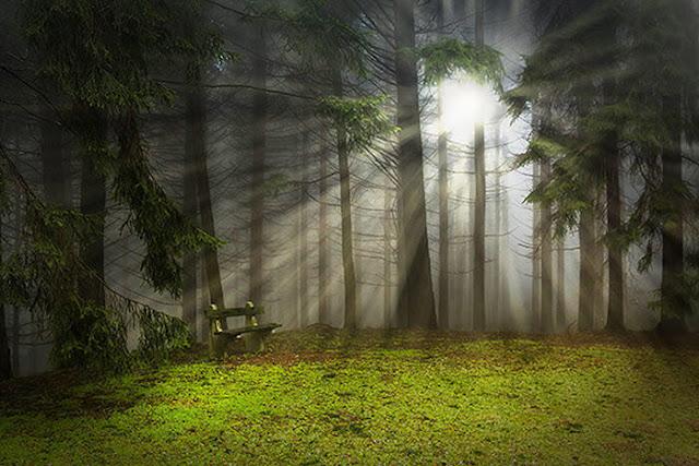 Cara Menambah Sinar Cahaya di Photoshop