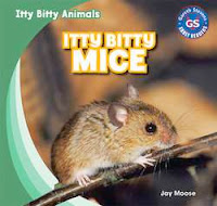 bookcover of ITTY BITTY MICE  (Itty Bitty Animals)  by Jay Moose