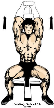 Article   186  The French press or Seated single dumbbell tricepsSeated Tricep Extension