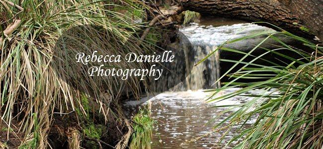 Rebecca Danielle