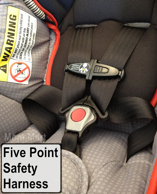 five point safety harness