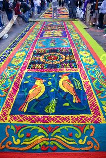 Guatemala en fotografia tradiciones semana santa for Antigua alfombras