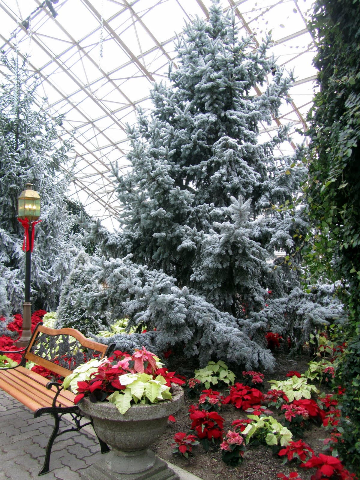 The Foellinger Freimann Botanical Conservatory Located In Downtown Fort  Wayne, Indiana Is The Brainchild Of Two Friends Who Were Well Traveled In  The ...