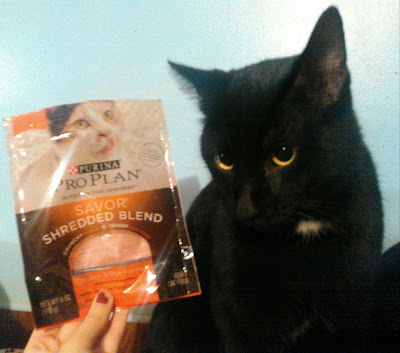 Cats Try Purina Pro Plan Savor Food