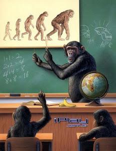 Uma Aula Sobre a Evolução