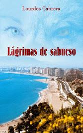 Mi novela en Amazon