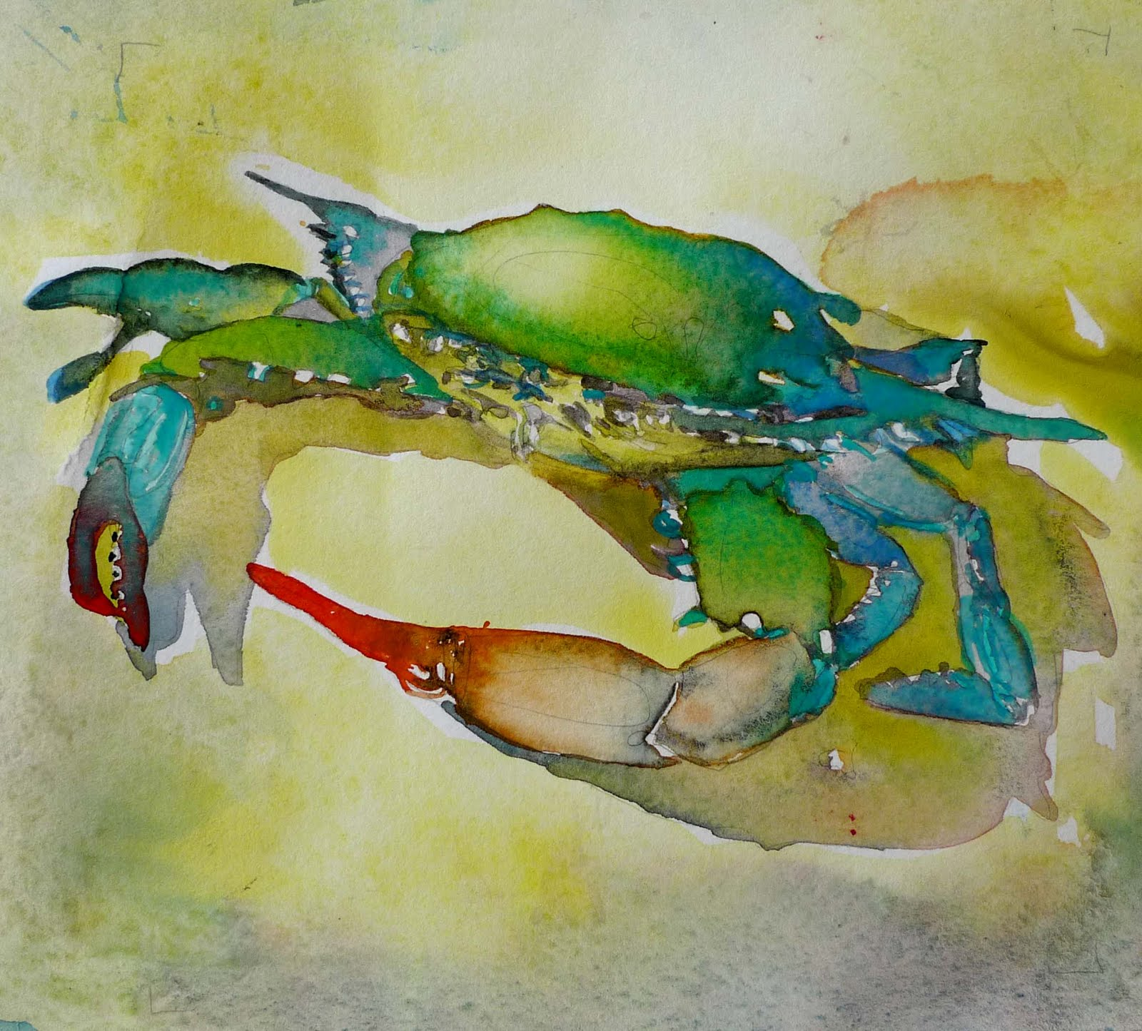 Blue crab watercolor painting